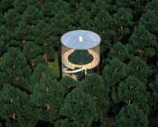 Almaty AMasow Vue aerienne Sapin 175x140 - Tree in the house : sapin en vitrine