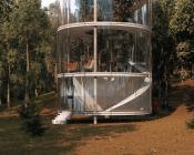 Almaty Sapin vitrine AMasow extérieur 175x140 - Tree in the house : sapin en vitrine
