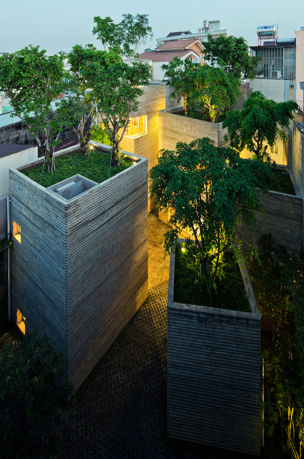House for trees 2 - House for trees : un arbre par-dessus les toits