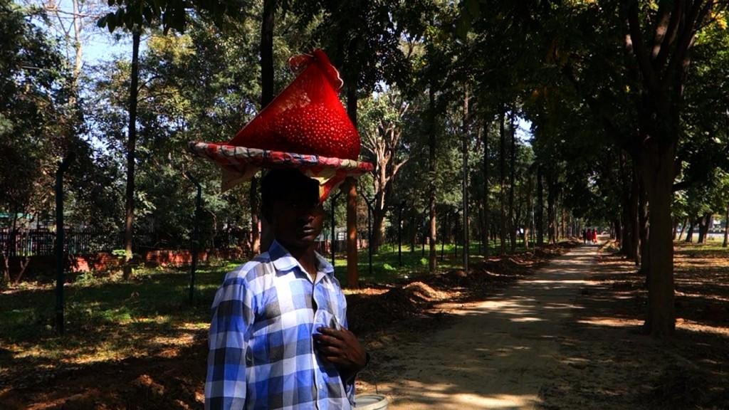 10 Vendeur de baies rouges compressed 1024x576 - Chandigarh, le devenir indien d'une ville moderne