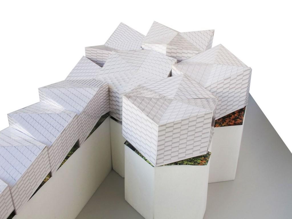 BRA br 06 toiture 1 compressed 1024x768 - Manuelle Gautrand, doublé gagnant